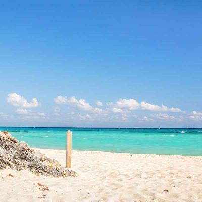 Tulum + Coba + Cenote + Playa del Carmen Plus 4X1