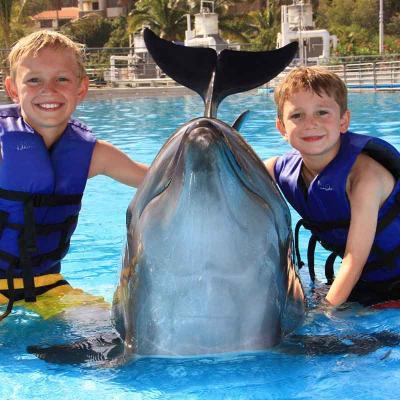 Dolphin Kids San Jose de Cabo