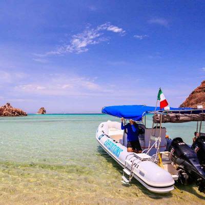 Espiritu Santo Island (Niño) (La Paz)