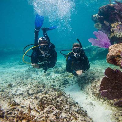 Scuba Diving (3 Tanques)