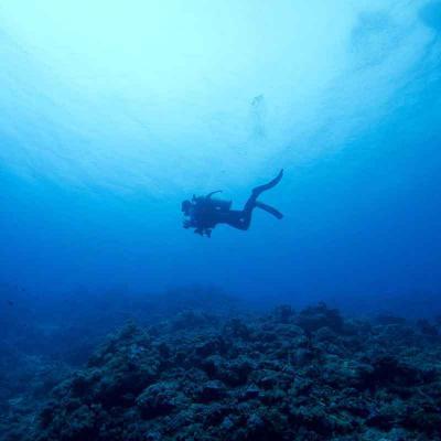 Scuba Diving (2 Tanques)