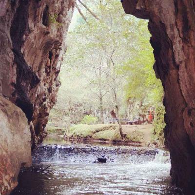 Excursión de medio día al Centro Eco Turístico Arcotete desde San Cristóbal de las Casas