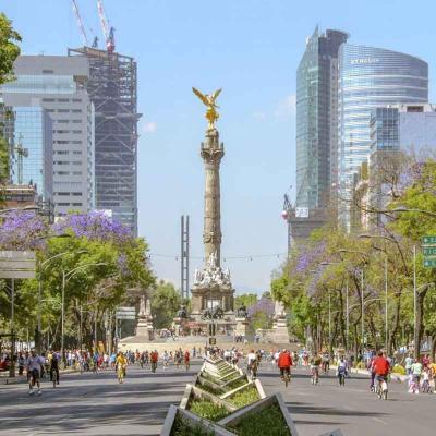 Recorrido de medio día por la Ciudad de México