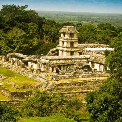 Tour Zona Arqueológica Palenque