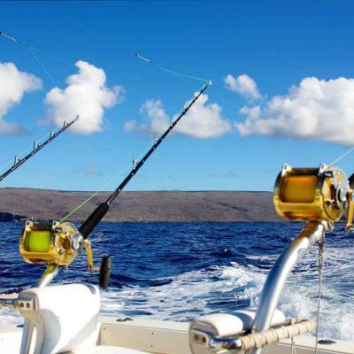 """Pesca """"Marlín Hunter"""" """"28"""" 8hrs"""