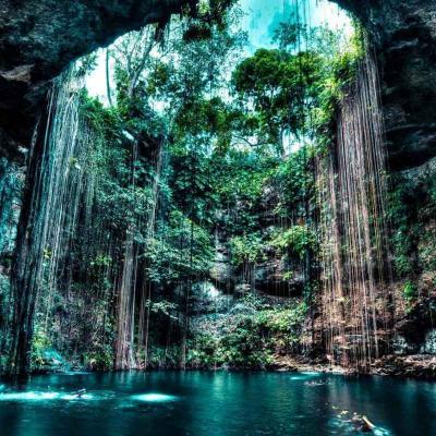 Recorrido de un día visitando los Cenotes y Haciendas de Yucatán desde Mérida